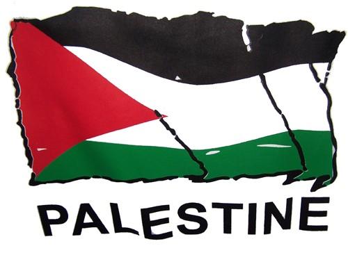 palestineflagtshirt.jpg