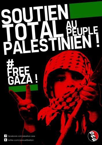soutien,palestine,palestine vaincra